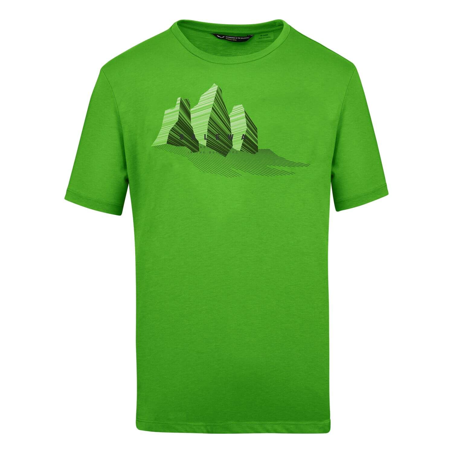 Salewa Lines Graphic Dry T-Shirt M pale frog melange